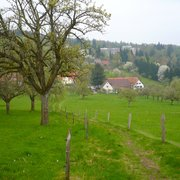 Alter Kohlhof, Heidelberg, Baden-Württemberg, Germany