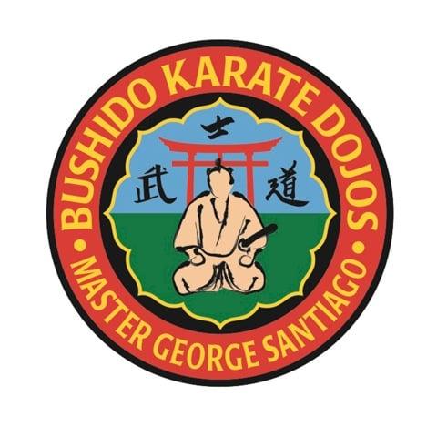 Bushido karate dojo martial arts islip terrace ny for 7 eleven islip terrace