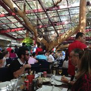 The restaurant was build around this enormous fig tree.