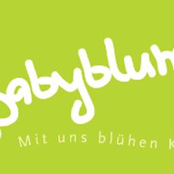 Babyblume, Gottmadingen, Baden-Württemberg