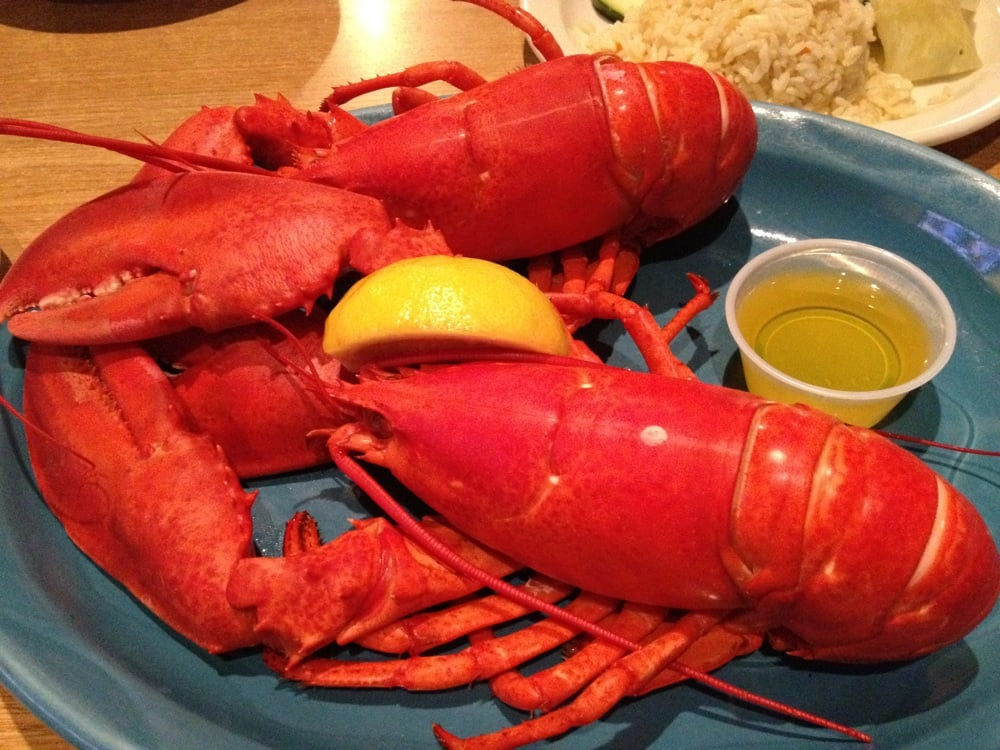 Mansfield (MA) United States  City new picture : ... & Sushi Bar Mansfield, MA, United States. Twin lobster dinner