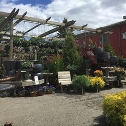 Mahoney S Garden Centers 14 Photos Gardening Centres 449 Western Ave Brighton Ma