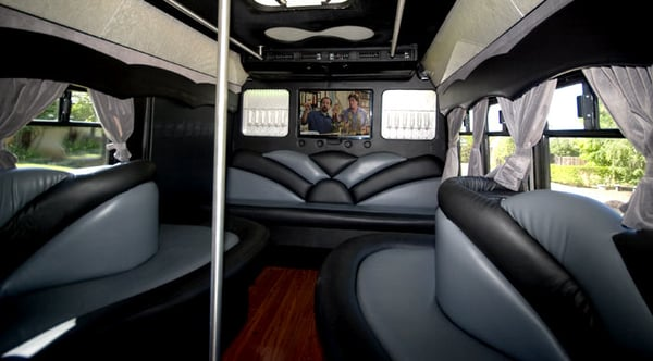 Luxury Bus Interior L.jpg