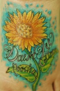 Dawn D.