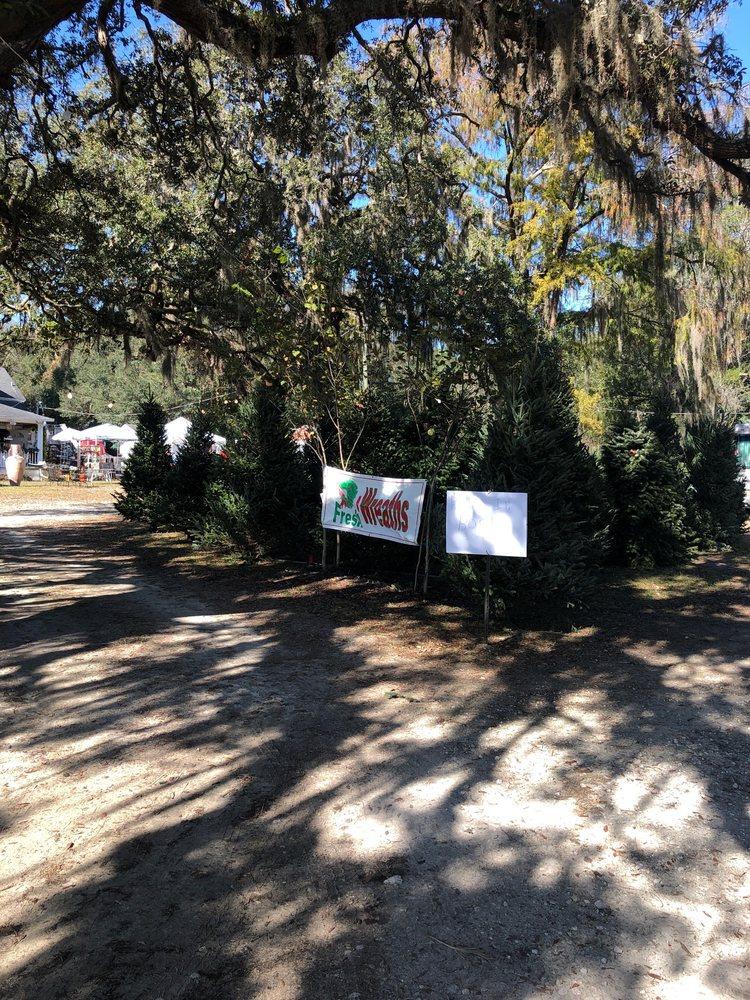 A Very Merry Christmas Tree Farm: 3591 W Gulf To Lake Hwy, Lecanto, FL