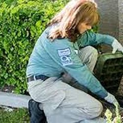 Photo Of The Mean Green Pest Control Damascus Md United States