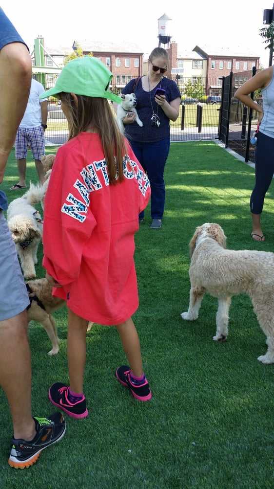 3 Girls & A Dog: 15 Center St, Nantucket, MA