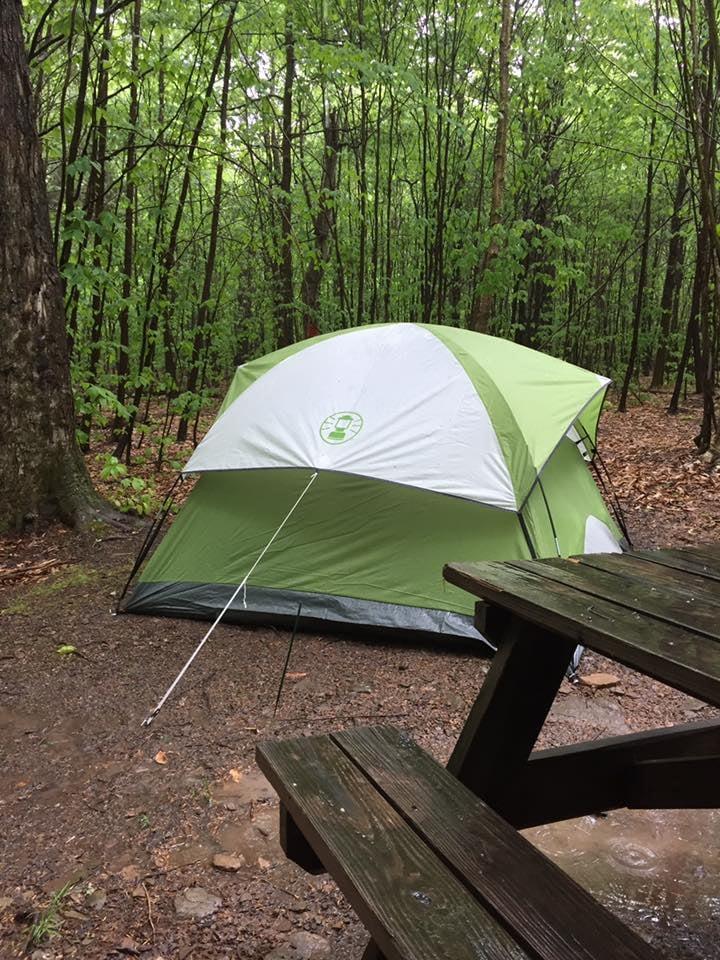 Pioneer Campground: 307 Pioneer Trl, Muncy Valley, PA