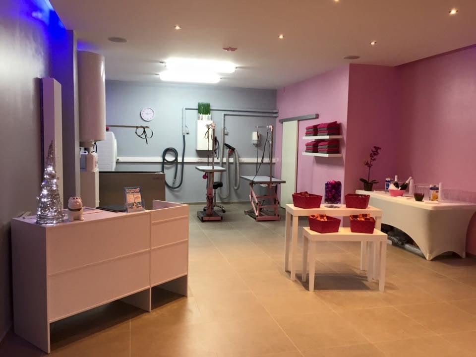 Photos pour happypuppy yelp for Salon toilettage