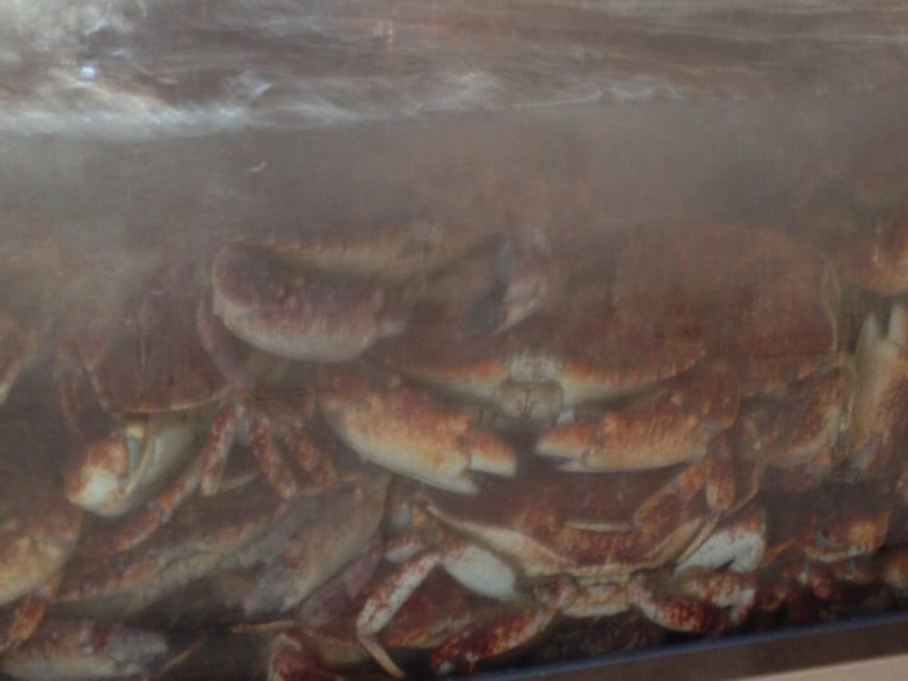 Fresh Fish Market Long Beach Ca