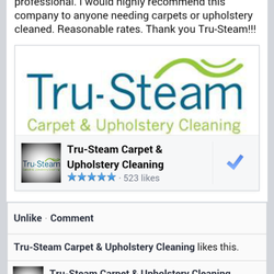 tru steam carpet upholstery cleaning limpieza de alfombras 5940 hwy 21 s rincon ga. Black Bedroom Furniture Sets. Home Design Ideas