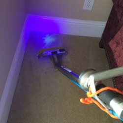 Photo Of Dirt Blasters Carpet Cleaning Atlanta Ga United States Pet Urine