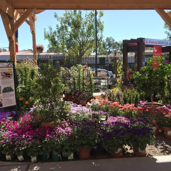 Photo Of Armstrong Garden Centers   San Diego, CA, United States. I Can
