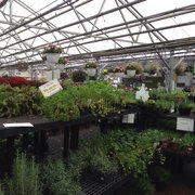 Collect Photo Of Johnson S Florist Garden Center Washington Dc United States