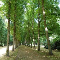 Begegnungsstätte Im Französischen Garten 21 Photos Herzgn
