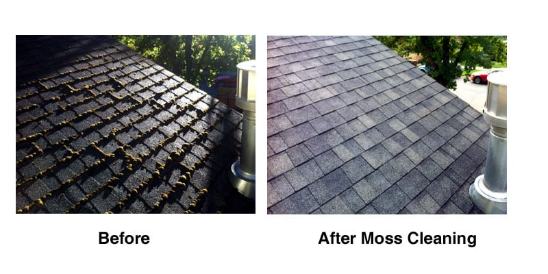 Aardvark Gutter Cleaning & Roof Moss Removal: Moscow, ID