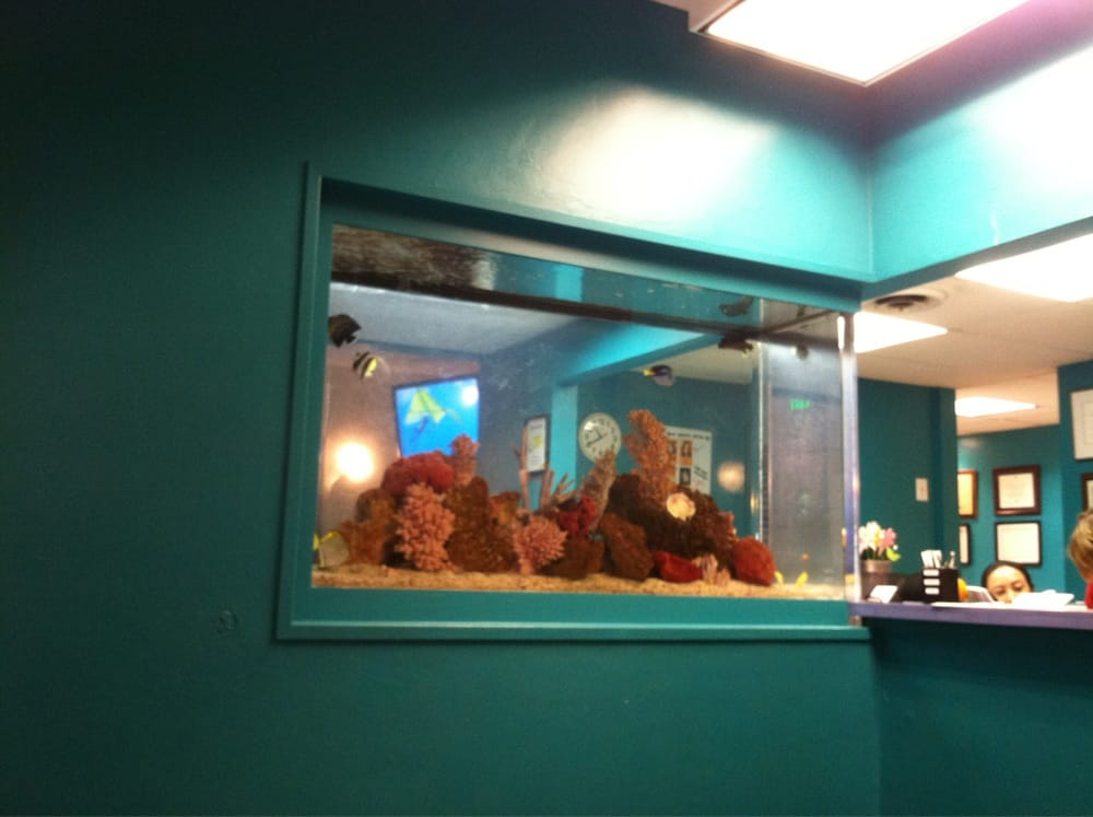 fancy fish tank. sick waiting area on other side - yelp