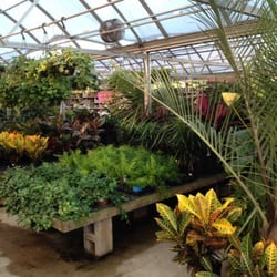 garden center nj. Photo Of Bob\u0027s Garden Center \u0026 Christmas World - Egg Harbor Township, NJ, United Nj D