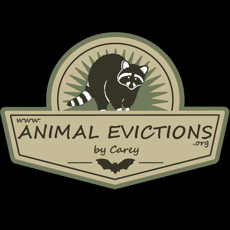 Animal Evictions By Carey: 661 E Main St, Midlothian, TX