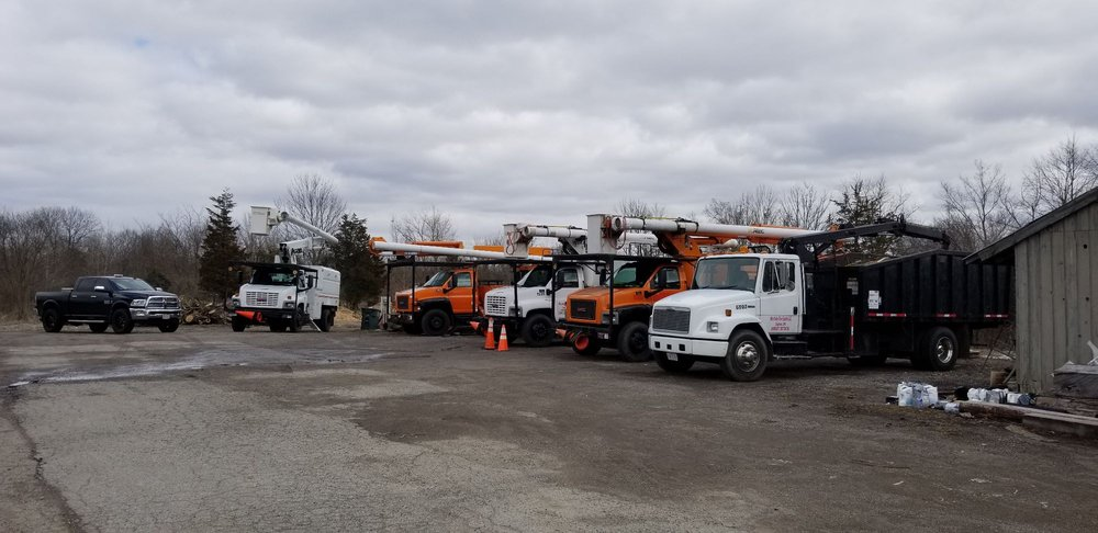 Ohio Valley Tree Experts: 640 S Union Rd, Dayton, OH
