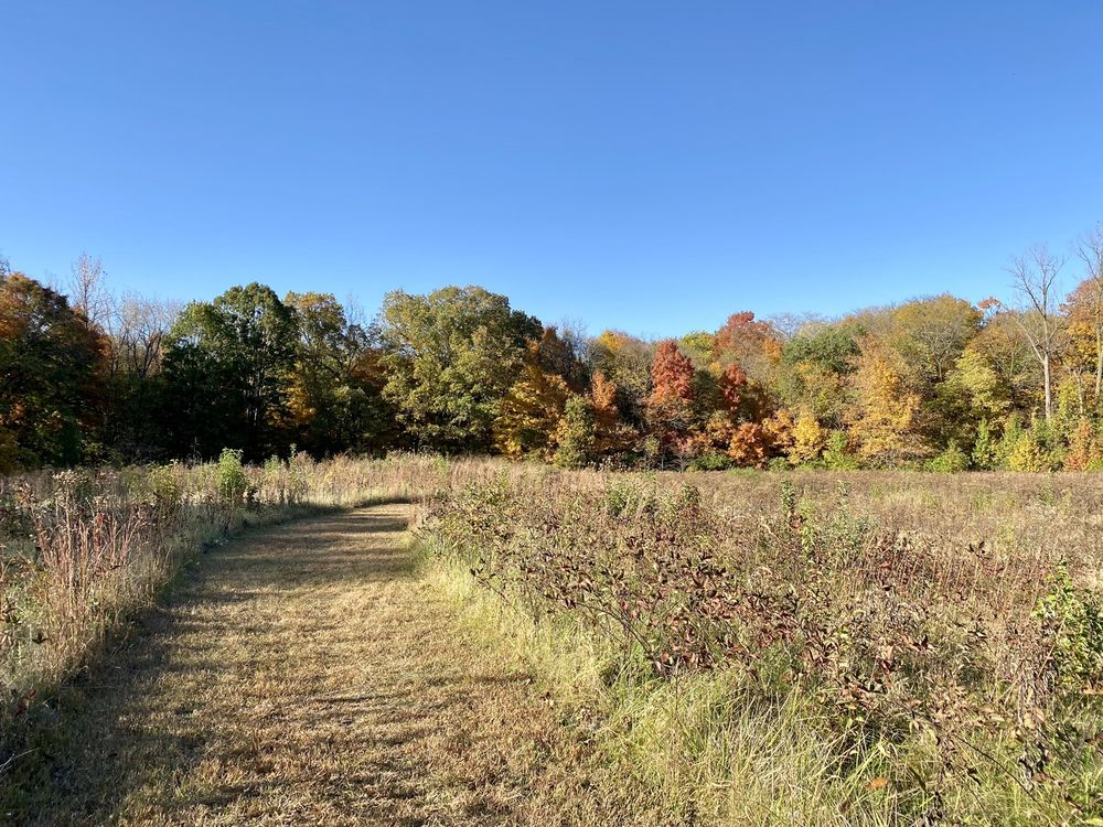 Lewis Memorial Acres: 399 S Koke Mill Rd, Springfield, IL