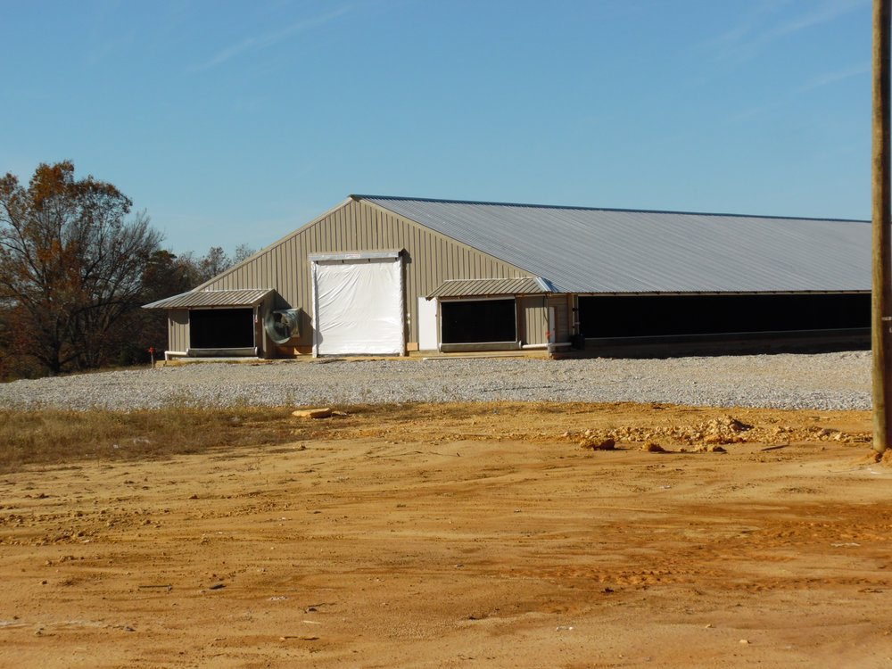 Strawberry Poultry Supply: 512 S Main St, Cave City, AR