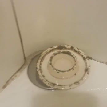 Black Mold In Bathroom Apartment carolina apartments - 18 photos - apartments - 401 hwy 54 bypass