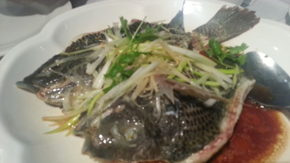 What a rip-off! $66 for a fish?!? - Yelp