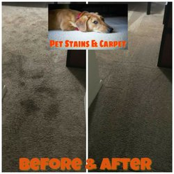 photo of carpet cleaning central florida orlando fl united states