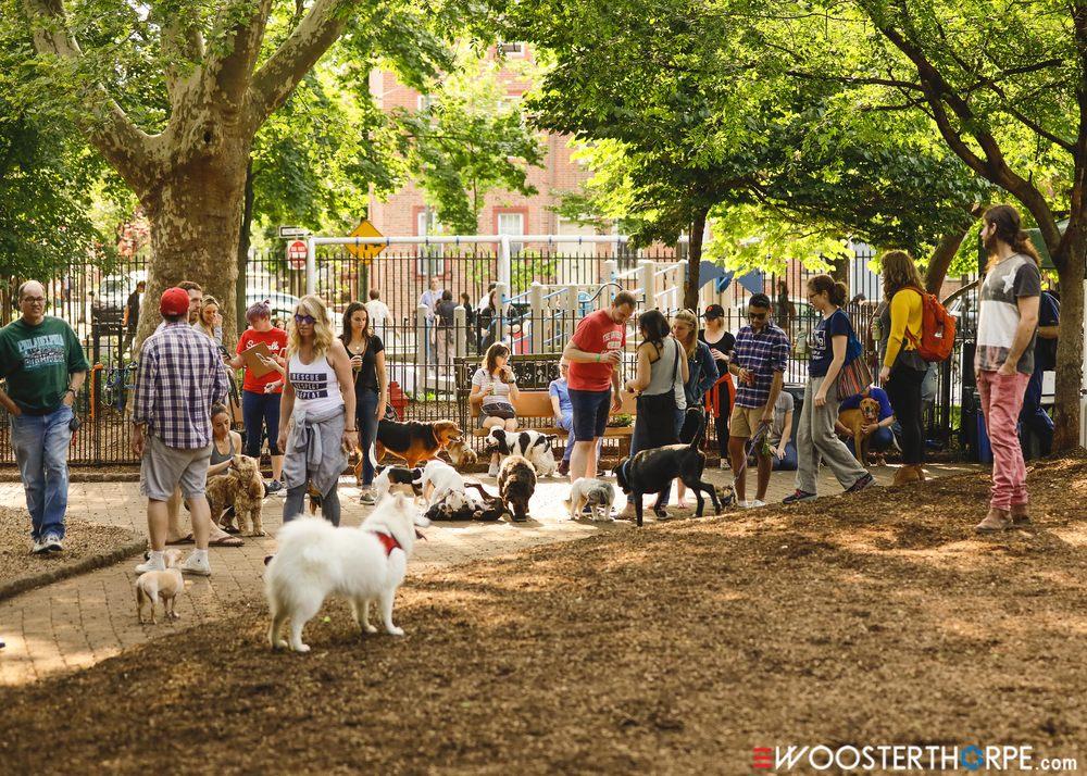 Seger Dog Park