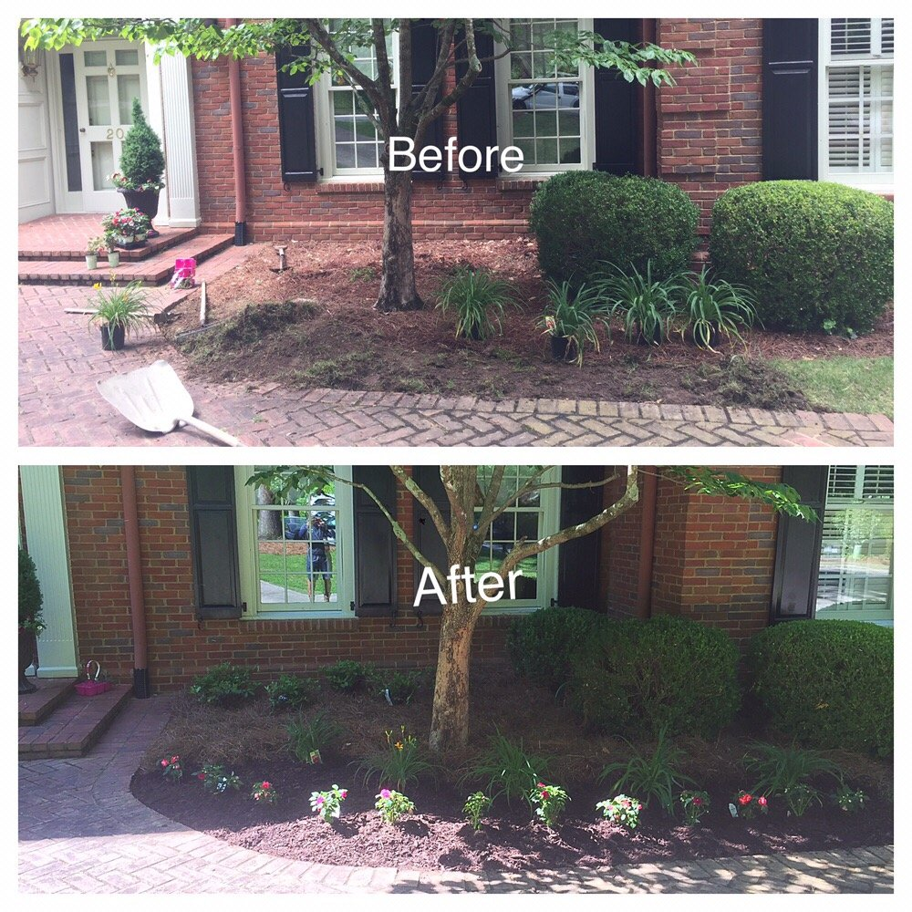Landscape Of Atlanta: Double Impatience And Azalea Install. With Much And Pine