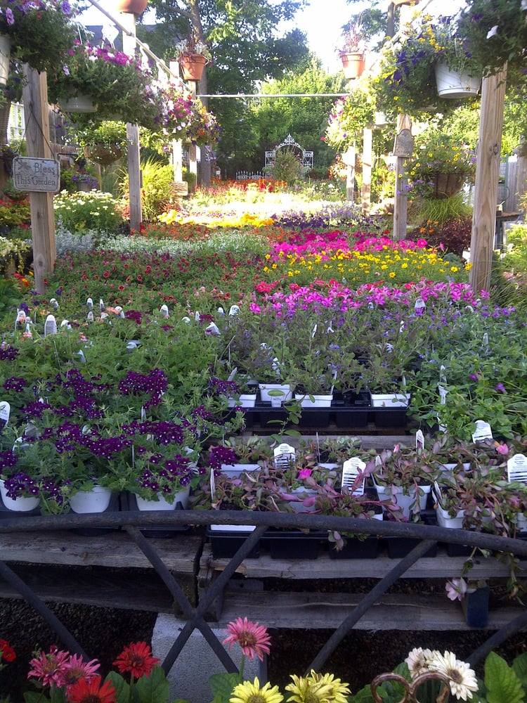 Photos For Bountiful Gardens Yelp