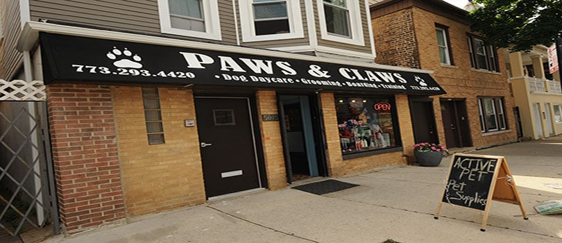 Lincoln (IL) United States  city pictures gallery : ... Pet Groomers Lincoln Square Chicago, IL, United States Yelp