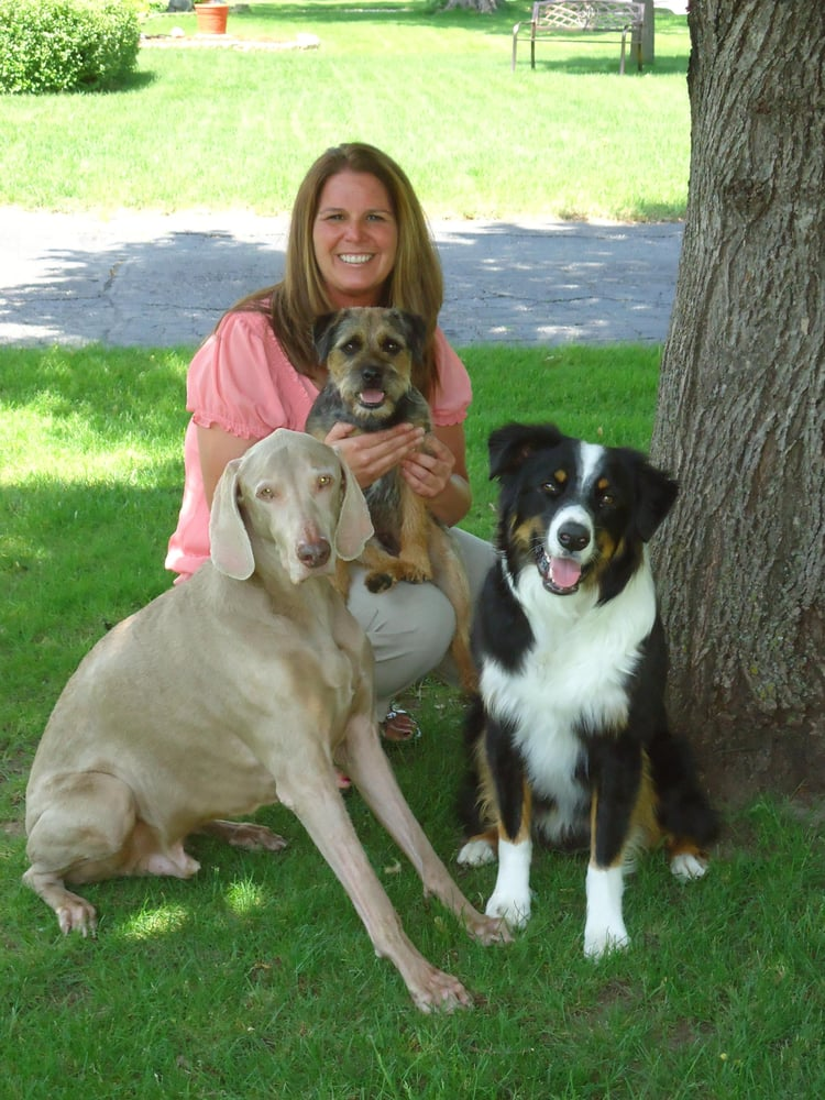 Christi's In Home Training & Pet Care: Inver Grove Heights, MN