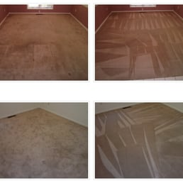 Bee Clean Carpet Amp Restoration Carpet Cleaning