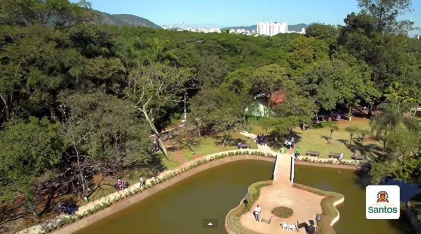 Jardim bot nico chico mendes jardin botanique r jo o for Jardin botanico numero telefonico