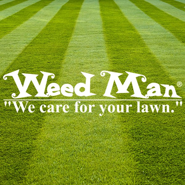 Weed Man: 33 West Avenue, Albion, NY