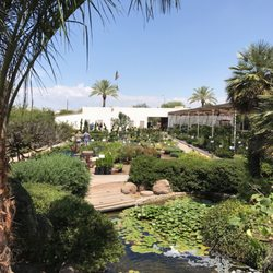Photo Of Treeland Nurseries Mesa Az United States