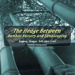 Hedge Between Bamboo Nursery - Nurseries & Gardening - 4350 Dillard