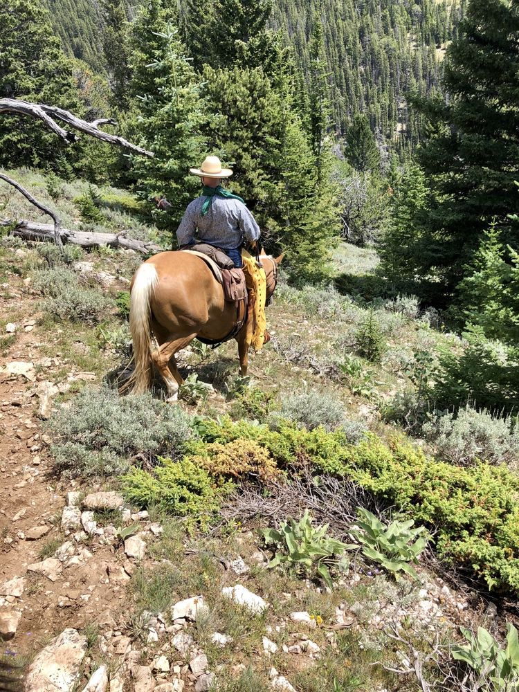 The Hideout Lodge & Guest Ranch: 3170 County Rd 40 1/2, Shell, WY