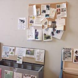 Animaliamo 14 foto negozi di animali via toffetti 73 for Cerco cose vecchie in regalo