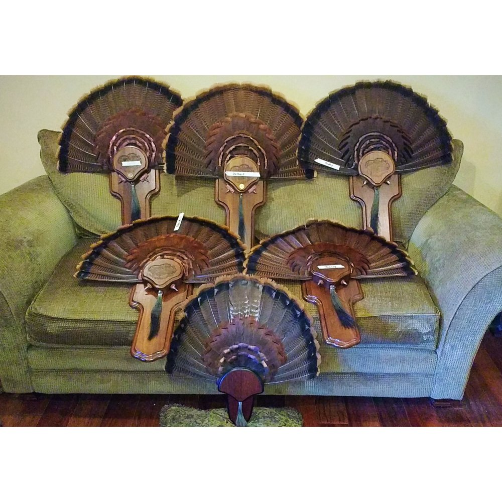 Fair Game Outfitters: 528 Collins Mill Rd, Castalia, NC