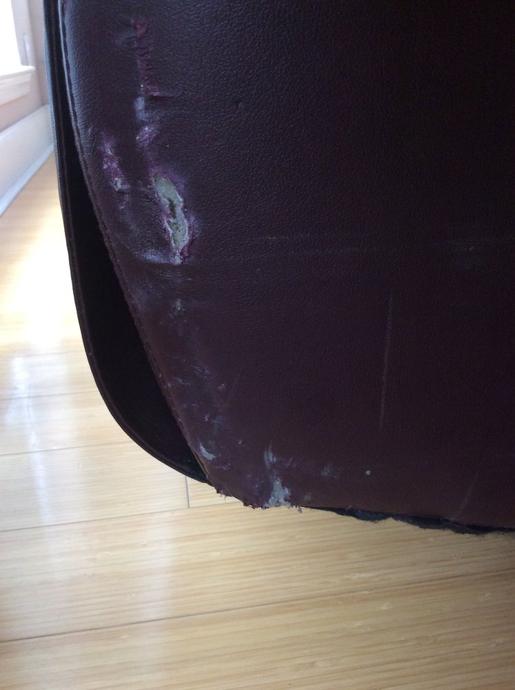 Sensational Damage Incurred To Our Leather Sofa Ripped So Deep That We Short Links Chair Design For Home Short Linksinfo