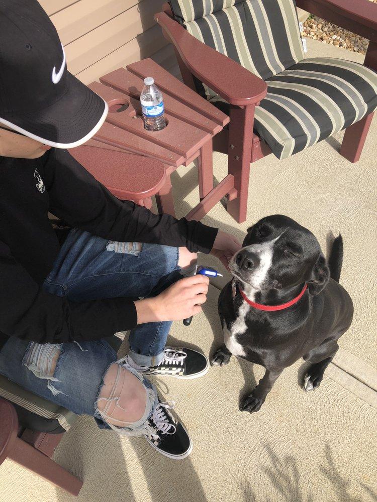 Nathaniel Kuhn's Pet Sitting: Pataskala, OH
