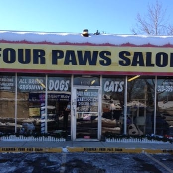 Four paws salon 10 reviews pet groomers 3722 monroe for 4 paws grooming salon