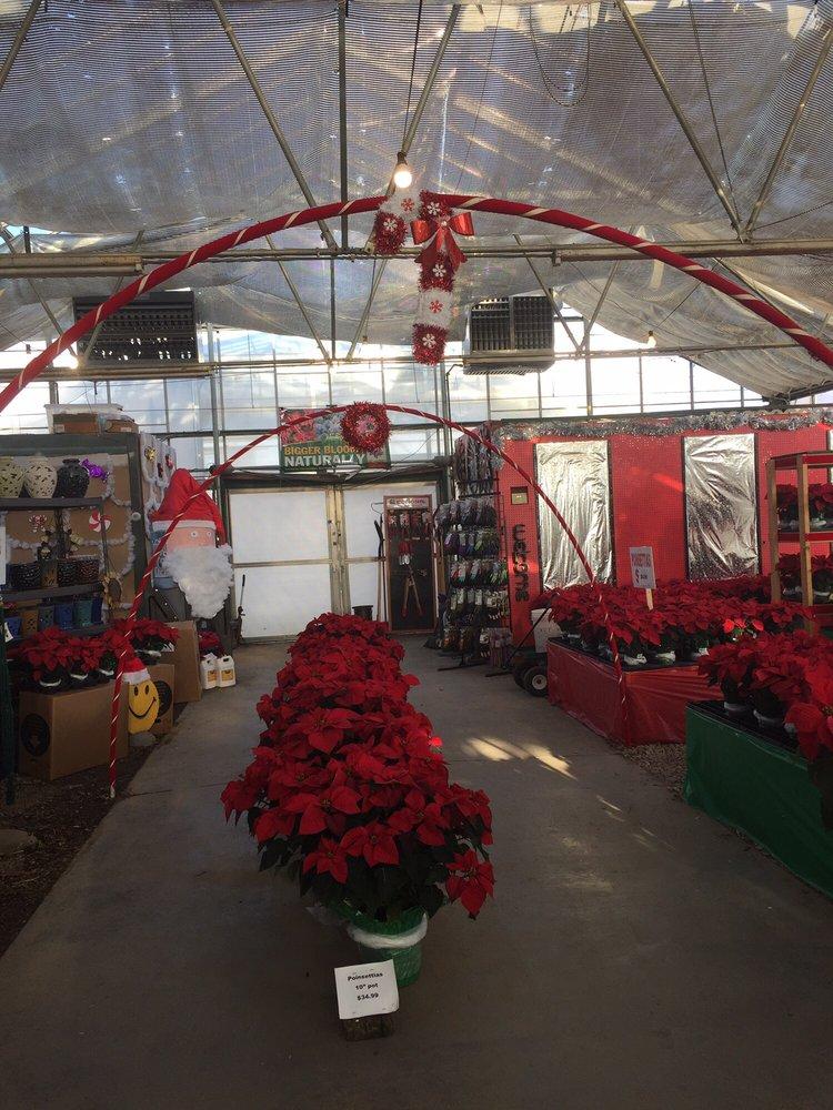 Meadows Farms Nurseries - Leesburg: 1360 East Market St, Leesburg, VA