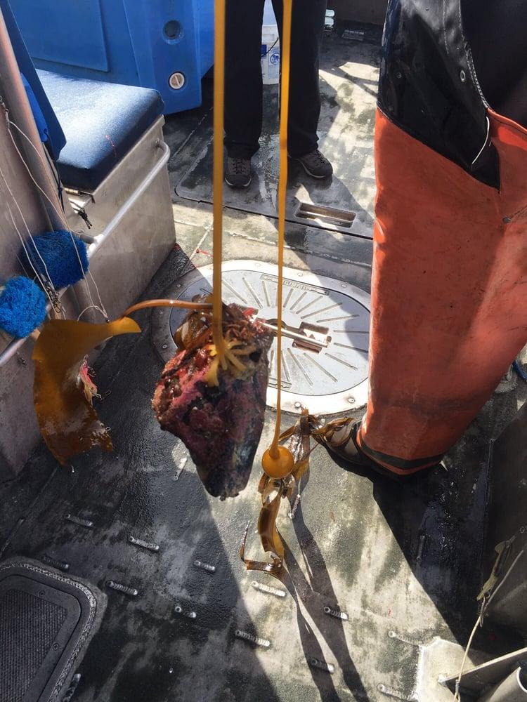 Kodiak Island Adventures: 10739 Chiniak Dr, Kodiak, AK