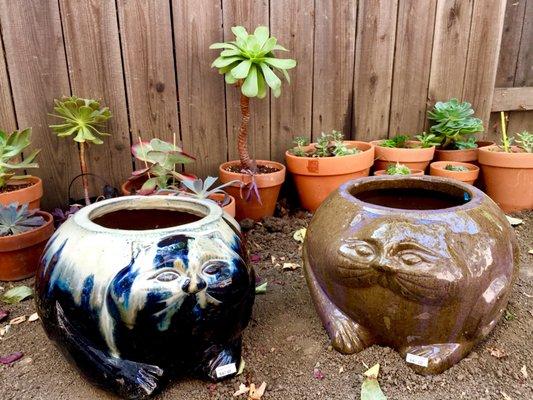 Pottery Paradise