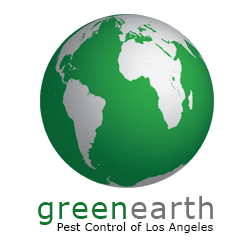 Green earth pest control of los angeles 21 photos pest for 11620 wilshire blvd 9th floor los angeles ca 90025