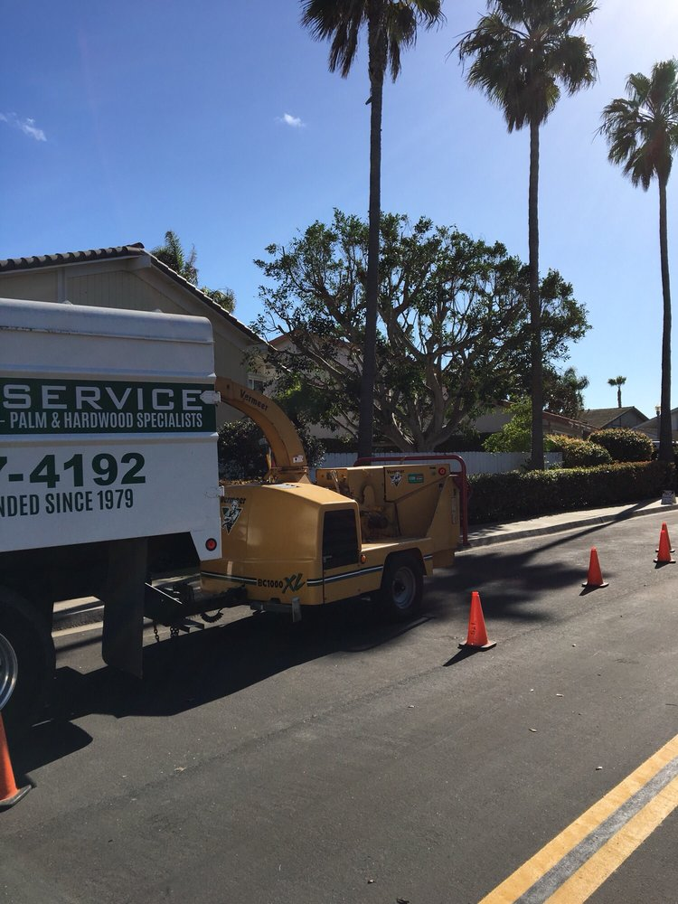Island Tree Service: Coronado, CA